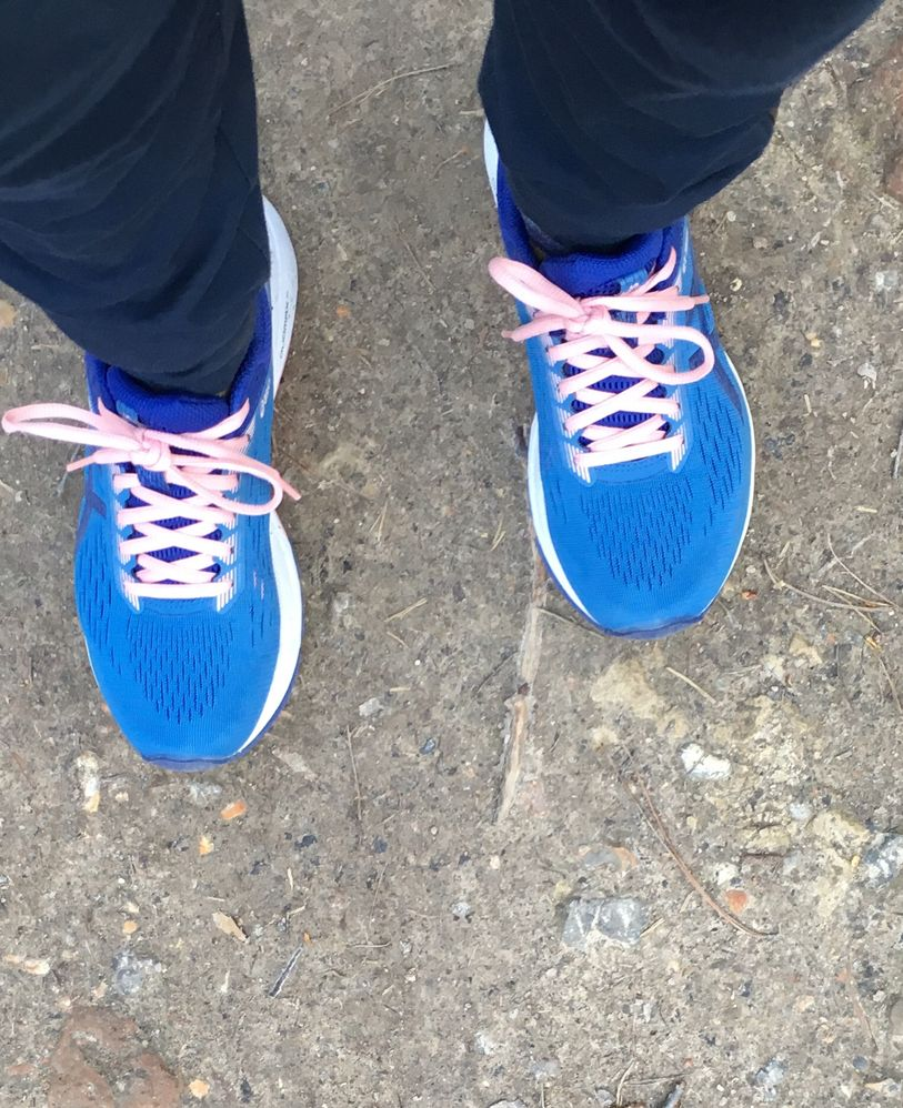 Blue shoes for walking